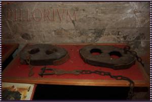 ceppi-legno-ferro